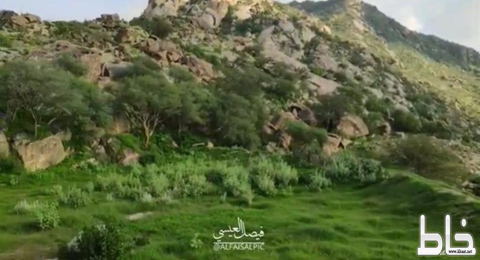 بالفيديو : شاهد الطبيعة الساحرة في جبال ثربان و الجمال الرباني