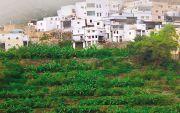 الخطيب يقف على وادي الغيل بمركز خاط ويبحث سبل تطوير المدرجات الزراعية