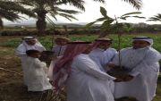 مدرسة عبد الله بن مسعود بمملح تُنفذ برنامج أسبوع الشجرة
