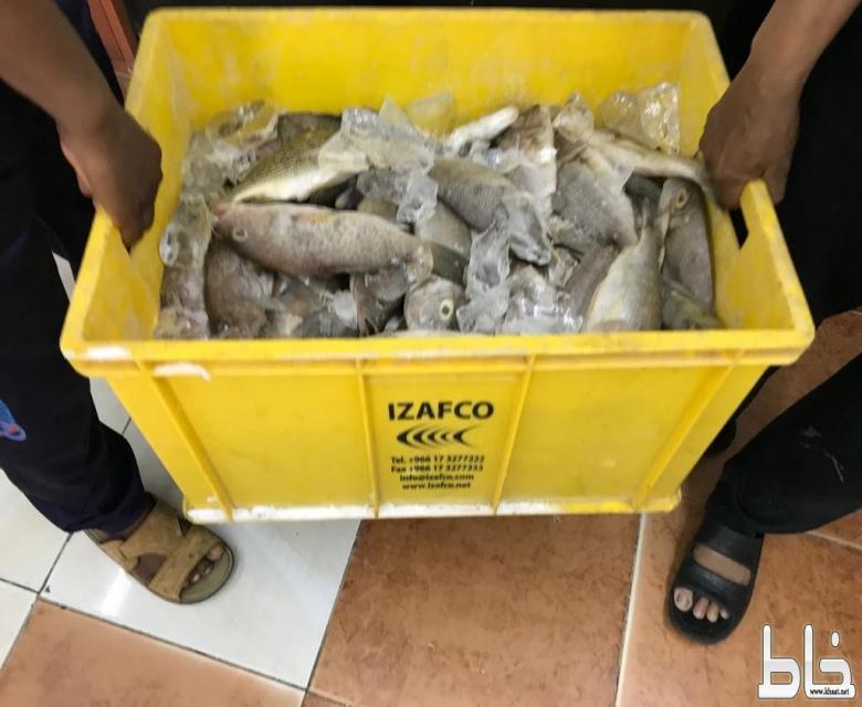 بلدية المجاردة تتلف 60 كلجم من الاسماك ضمن الحملة المكثفة في الحج