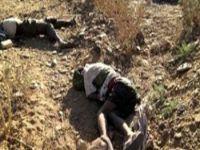 مصرع وإصابة 16 شخصاً في تهامة قحطان..وحرس الحدود ينفي المطاردة ومصادر تؤكد!