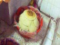 سقوط مصنع مخالف للمعجنات داخل قصر أفراح بالمجاردة