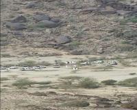 شاب يقتل اثيوبي دهسا بالعرضية الشمالية