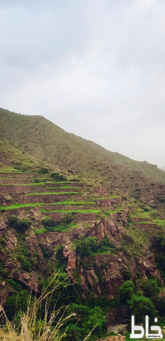 صور مناظر طبيعية من قرية آل شعثاء بمركز خاط