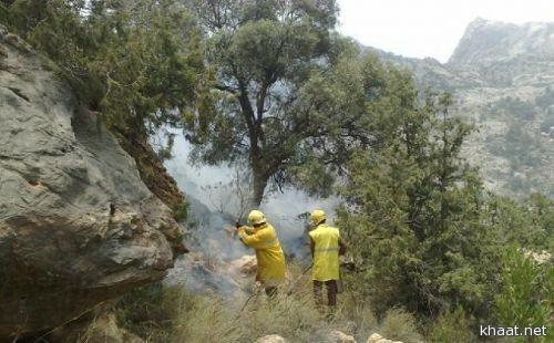 """حريق يلتهم غابات جبل """"منعا"""" بتنومة .. والدفاع المدني يستخدم الطفايات اليدوية للسيطرة على الحريق"""