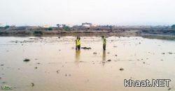 حالة استنفار بعد امطار وسيول محايل الغزيرة