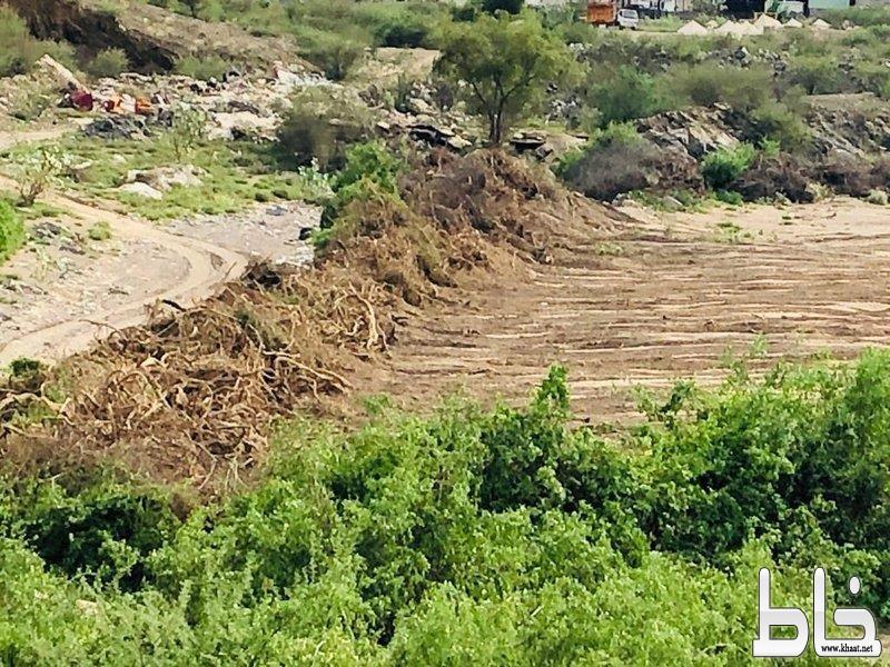 """مواطن يجرف آلاف الأمتار من الغطاء النباتي في المجاردة بـ""""شيول"""".. """"والبيئة"""" تلاحقه"""