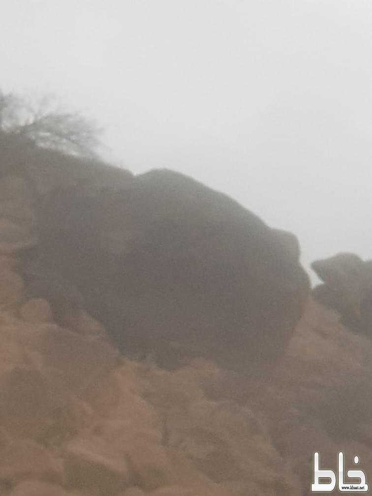 بالصور شاهد: صخرة عملاقة تهدد حياة اسرة مواطن بأحد ثربان غرب المجاردة