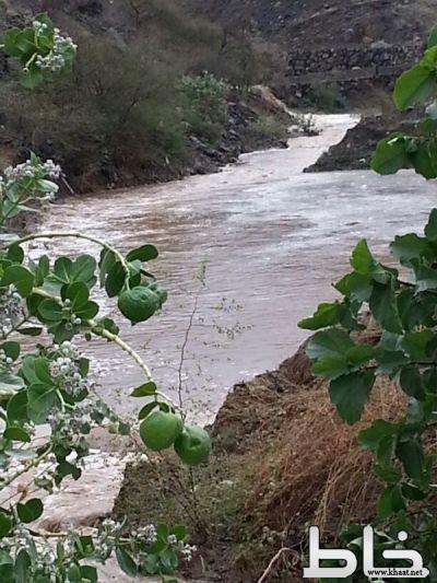 بالصور .. أمطار متوسطة إلى غزيرة على مركز خاط ومحافظتي المجاردة وبارق